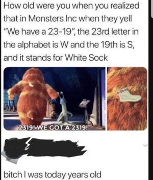 "Bitch, Funny, and Monsters Inc: How old were vou when vou realized  that in Monsters Inc when they yell  ""We have a 23-19"", the 23rd letter in  the alphabet is W and the 19th is S,  and it stands for White Sock  2319!-WE GOT A 2319!  bitch I was today years old 23-19!!! via /r/funny https://ift.tt/2S5UefP"