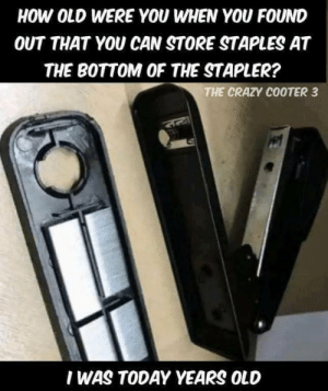 Crazy, Fuck, and Staples: HOW OLD WERE YOU WHEN YOU FOUND  OUT THAT YOU CAN STORE STAPLES AT  THE BOTTOM OF THE STAPLER?  THE CRAZY COOTER 3  I WAS TODAY YEARS OLD Fuck.