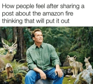 Amazon, Fire, and MeIRL: How people feel after sharing a  post about the amazon fire  thinking that will put it out MeIrl