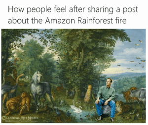 Art Memes: How people feel after sharing a post  about the Amazon Rainforest fire  CLASSICAL ART MEMES  facebook.com/classicalartimemes