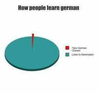 The Metal Punk Strikes Back: How people learn german  Take German  Classes  I Listen to Rammstein The Metal Punk Strikes Back