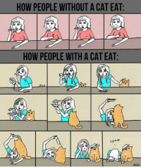 srsfunny:How Cat Owners Usually Eat: HOW PEOPLE WITHOUT A CAT EAT:  HOW PEOPLE WITH A CAT EAT:  I give up srsfunny:How Cat Owners Usually Eat