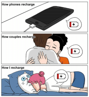 Instagram, Memes, and Artist: How phones recharge  How couples recharge  How I recharge There's nothing more healing than a warm kitty belly and some purrs 😻 - Artist: @shaogao_en, Instagram