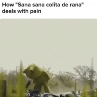 "Memes, Mexican, and Pain: How ""Sana sana colita de rana""  deals with pain Orale 🤣 FOLLOW US➡️ @so.mexican"
