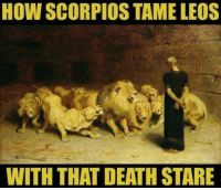 Death, How, and Deaths: HOW SCORPIOS TAME LEOS  WITH THAT DEATH STARE
