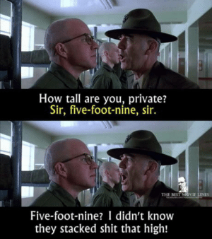 Is there a good comeback to this?: How tall are you, private?  Sir, five-foot-nine, sir.  THE BEST MOVIE LINES  beomce  Five-foot-nine? I didn't know  they stacked shit that high! Is there a good comeback to this?