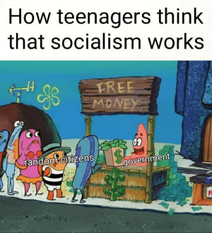 30-minute-memes:  Now wait a minute…: How teenagers think  that socialism works  random citizens  government 30-minute-memes:  Now wait a minute…