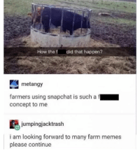 { funnytumblr textposts funnytextpost tumblr funnytumblrpost tumblrfunny followme tumblrfunny textpost tumblrpost haha shoutout}: How the f  did that happen?  metangy  farmers using hat is such a  f  concept to me  jumpingjacktrash  i am looking forward to many farm memes  please continue { funnytumblr textposts funnytextpost tumblr funnytumblrpost tumblrfunny followme tumblrfunny textpost tumblrpost haha shoutout}