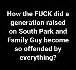 Family, Family Guy, and Memes: How the FUCK did a  generation raised  on South Park and  Family Guy become  so offended by  everything? I really do wonder 🤨🤨