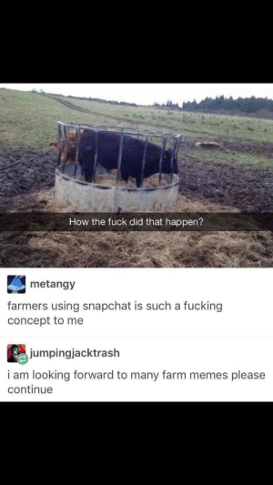 Please Continue: How the fuck did that happen?  metangy  farmers using snapchat is such a fucking  concept to me  jumpingjacktrash  i am looking forward to many farm memes please  continue