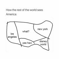 Which one are you from? I'm trynna see sumn. 🧐😭👇🏼: How the rest of the world sees  America:  new york  what?  los  angeles  yee haw disney  world Which one are you from? I'm trynna see sumn. 🧐😭👇🏼