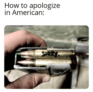 American apology: How to apologize  in American:  SOREY. American apology