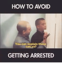 Memes, How To, and 🤖: HOW TO AVOID  You can explain these  can ya?  GETTING ARRESTED Well played. 😂😂😂