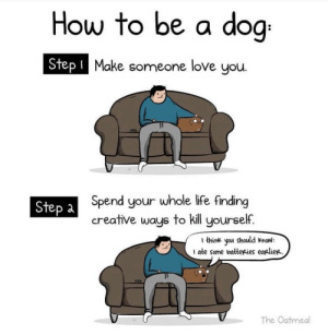 Funny, Life, and Love: How to be a doo  Step l  Make someone love you.  Spend your whole life finding  creative ways to kill yourself.  Step à  1 think you should know  I ate some vatteRies earliee.  The Oatmeal How to be a dog via /r/funny https://ift.tt/2N8jkZt