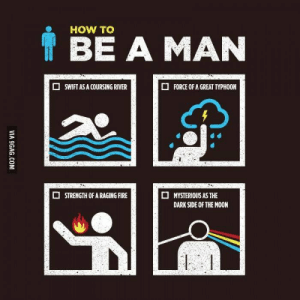 Dark Side of the Moon: HOW TO  BE A MAN  FORCE OF A GREAT TYPHOON  SWIFT AS A COURSING RIVER  STRENGTH OF A RAGING FIRE  MYSTERIOUS AS THE  DARK SIDE OF THE MOON  VIA 9GAG.COM