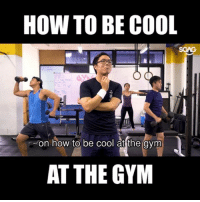 Gym, Memes, and Cool: HOW TO BE COOL  2  on how to be cool atthe avm  0  AT THE GYM The definitive guide on how to use this <link in bio> to be the COOLEST person in the gym!! gym101 truestory
