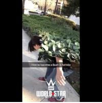 """fd8f6769 Memes, Wshh, and How To: How to become a Bush in fortnite UDPLD STAR HIP  HOP. C """"How to become a bush in Fortnite"""" 😩😂 WSHH (via @lordtanxs  @lilheartpain)"""