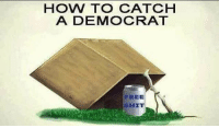 America, Funny, and Instagram: HOW TO CATCH  A DEMOCRAT  FREE  SHIT Gotta catch em all. 🔴www.TooSavageForDemocrats.com🔴 JOINT INSTAGRAM: @rightwingsavages DonaldTrump Trump 2A MakeAmericaGreatAgain Conservative Republican Liberal Democrat Ccw247 MAGA Politics LiberalLogic Savage TooSavageForDemocrats Instagram Merica America PresidentTrump Funny True SecondAmendment
