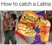 Ohh you almost had it!! 😂😂: How to catch a Latina Ohh you almost had it!! 😂😂