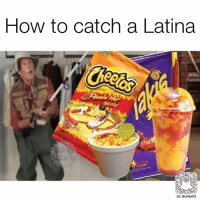 Oh yeahhhh! lol 😂 @beinglatino 😂 Beinglatino BeLatino LatinosBeLike LatinasBeLike hispanicsBeLike LatinoProblems HispanicProblems GrowingUpHispanic GrowingUpLatino GrowingUpMexican MexicansBeLike TheStruggle FunnyAF FunnyMeme: How to catch a Latina  SC: BLSNAPZ Oh yeahhhh! lol 😂 @beinglatino 😂 Beinglatino BeLatino LatinosBeLike LatinasBeLike hispanicsBeLike LatinoProblems HispanicProblems GrowingUpHispanic GrowingUpLatino GrowingUpMexican MexicansBeLike TheStruggle FunnyAF FunnyMeme