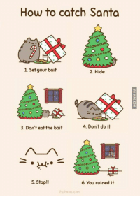The plan was almost purrfect...: How to catch Santa  1. Set your bait  2. Hide  4. Don't do it  3. Don't eat the bait  00000  000000000  5. Stop!!  6. You ruined it  Pusheen com The plan was almost purrfect...