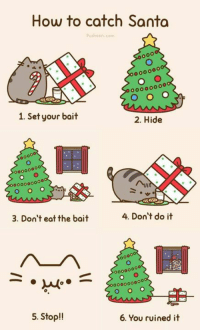 For the upcoming Christmas Eve - How to catch Santa: How to catch Santa  Push en conn  1. Set your bait  2. Hide  00000  4. Don't do it  3. Don't eat the bait  5. Stop!!  6. You ruined it For the upcoming Christmas Eve - How to catch Santa