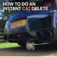 Memes, Boost, and How To: HOW TO DO AN  NSTANT CAT DELETE How to do a cat delete on a GT-R 😂 📹:@j.p.g7 . . carthrottle carmemes jdm turbo boost tuner carsofinstagram carswithoutlimits carporn instacars supercar carspotting supercarspotting stancenation stancedaily racecar blacklist cargram thecarlovers cargramm autotrend motors fastcar carstagram instaauto cat