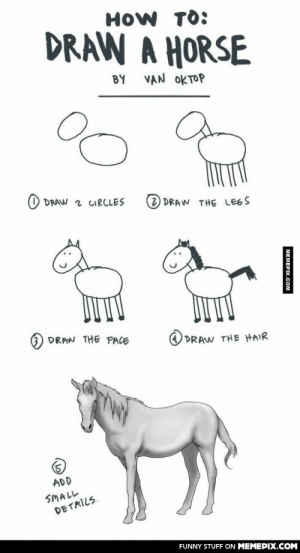 What I see when people teach me to drawomg-humor.tumblr.com: HOW TO:  DRAW A HORSE  BY  VAN OKTOP  O DRAW 2 CIRCLES  2) DRAW THE LE6S  DRAW THE FACE  DRAW THE HAIR  ADD  SMALL  DETAILS.  FUNNY STUFF ON MEMEPIX.COM  MEMEPIX.COM What I see when people teach me to drawomg-humor.tumblr.com
