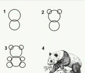 How to draw a panda in 4 easy steps: How to draw a panda in 4 easy steps