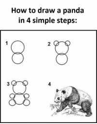 how to draw a panda: How to draw a panda  in 4 simple steps: