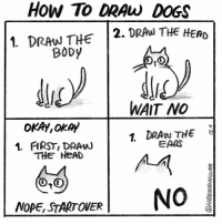 Dogs, Head, and Memes: How To DRAw DOGS  1. DrAN THE 2. DRAu THE HERD  BODy  WAIT NO  OKAY,ORA  1 DRAN THE  EARS  4. FIRST, DRAu  THE HEAD  6-2  0,0  NOPE, STARTOVER I'm a one trick pony