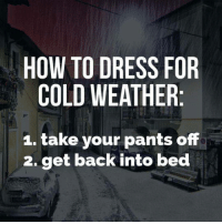 Memes, Weather, and 🤖: HOW TO DRESS FOR  COLD WEATHER  1. take your pants off  2. get back into bed