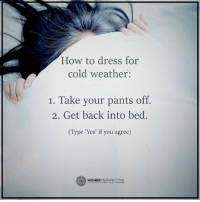 HOW TO DRESS FOR COLD WEATHER: How to dress for  cold weather:  1. Take your pants off.  2. Get back into bed.  (Type 'Yes' if you agree)  HIGHER  PERSPECTIVE HOW TO DRESS FOR COLD WEATHER