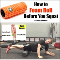 Are you foam rolling correctly before you squat? If not, you may be wasting your time & leaving stiffness on the table that could be hindering your technique quality!😳😳 . Foam rolling has been shown in research to help improve mobility, allowing you to get into better technical positions while lifting. It also does NOT decrease your ability to produce strength & power! ✅ . The big take away: roll SLOWLY up & down the length of your muscles looking for stiff or tender areas. When you find a spot, sit in it & move into it with slow rhythmical movements. Moving fast up & down the length of the muscle doesn't lead to much change in your tissues at all! So .... go slow! _________________________________ This is a clip from episode 5 of the AskSquatU Show on my YouTube - check it out for a full 20 min review of how I warm up before squatting! _________________________________ Squat SquatUniversity Powerlifting weightlifting crossfit training wod workout gym fit fitfam fitness fitspo oly olympicweightlifting hookgrip mobility USAW physicaltherapy lifting crossfitter motivation AskSquatU squats crossfitcommunity foamroller foamroll: How to  Foam Roll  Before You Squat  @Squat University  Quad  Muscles  Rectus Femoris  Vastus Medialis  Vastus Lateralis Are you foam rolling correctly before you squat? If not, you may be wasting your time & leaving stiffness on the table that could be hindering your technique quality!😳😳 . Foam rolling has been shown in research to help improve mobility, allowing you to get into better technical positions while lifting. It also does NOT decrease your ability to produce strength & power! ✅ . The big take away: roll SLOWLY up & down the length of your muscles looking for stiff or tender areas. When you find a spot, sit in it & move into it with slow rhythmical movements. Moving fast up & down the length of the muscle doesn't lead to much change in your tissues at all! So .... go slow! _________________________________ This is a clip from episode 5 of the AskSquatU Show on my YouTube - check it out for a full 20 min review of how I warm up before squatting! _________________________________ Squat SquatUniversity Powerlifting weightlifting crossfit training wod workout gym fit fitfam fitness fitspo oly olympicweightlifting hookgrip mobility USAW physicaltherapy lifting crossfitter motivation AskSquatU squats crossfitcommunity foamroller foamroll