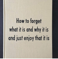 How To, How, and Why: How to forget  what it is and why it is  and just enjoy that it is