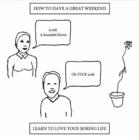 Funny, Weekend, and Fuck Yeah: HOW TO HAVE A GREAT WEEKEND  Look!  A beautiful flower  Oh FUCK yeah  LEARN TO LOVE YOUR BORING LIFE This killed me @emotionalclub
