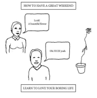 Weekend, Fuck Yeah, and Oh Fuck: HOW TO HAVE A GREAT WEEKEND  Look!  A beautiful flower  Oh FUCK yeah  LEARN TO LOVE YOUR BORING LIFE