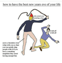 Ironic, Memes, and Whip: how to have the best new years eve of your life  why arent you  wearing a hat  fell off  it fell off  carry a harmless iron  whip with you so that  you can gently slap  people with it if you  have a sneaking  suspicion they arent  having enough fun Happy New Years!!!