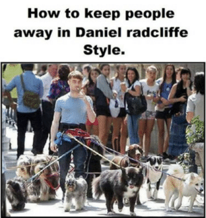 How to keep people away in Daniel Redcliffe style  http://funniestmeme.blogspot.com/2016/11/how-to-keep-people-away-in-daniel.html: How to keep people  away in Daniel radcliffe  Style. How to keep people away in Daniel Redcliffe style  http://funniestmeme.blogspot.com/2016/11/how-to-keep-people-away-in-daniel.html