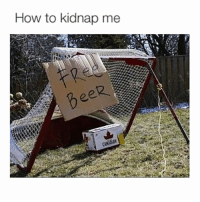 Kidnapped Me: How to kidnap me