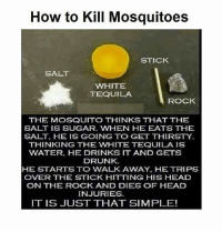 This kills the mosquito: How to Kill Mosquitoes  STICK  SALT  WHITE  TEQUILA  ROCK  THE MOSQUITO THINKS THAT THE  SALT IS SUGAR. WHEN HE EATS THE  THINKING THE WHITE TEQUILA IS  WATER. HE DRINKS IT AND GETS  DRUNK  HE STARTS TO WALK AWAY. HE TRIPS  OVER THE STICK HITTING HIS HEAD  ON THE ROCK AND DIES OF HEAD  INJURIES  IT IS JUST THAT SIMPLE! This kills the mosquito