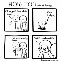 Memes, How To, and Stuff: HOW TO Look the  f  Oh  V US  dose!  dog.  es dust stand  But it  so beautif  there  thesanesporza com Look at it!! It's doing dog stuff!
