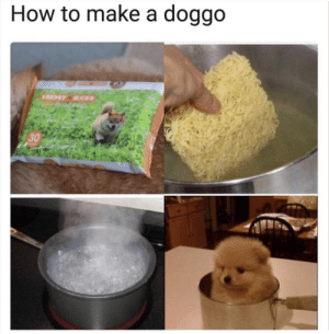 Cute, Ramen, and How To: How to make a doggo  30 Cute ramen and a pinch of salt