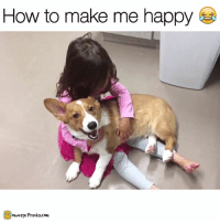 Memes, Prank, and Materialism: How to make me happy  own age Pranks.com Materials: One pupper