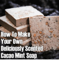 "How To Make Your Own Deliciously Scented Cacao Mint Soap:  http://www.herbs-info.com/blog/how-to-make-your-own-deliciously-scented-cacao-mint-soap/   Ready for some ""mint choc chip"" bathroom yumminess? Click the link to learn how it's done!  #cacao #soap #beauty: HOW TO Make  Your Own  Deliciously Scented  Cacao Mint Soap How To Make Your Own Deliciously Scented Cacao Mint Soap:  http://www.herbs-info.com/blog/how-to-make-your-own-deliciously-scented-cacao-mint-soap/   Ready for some ""mint choc chip"" bathroom yumminess? Click the link to learn how it's done!  #cacao #soap #beauty"