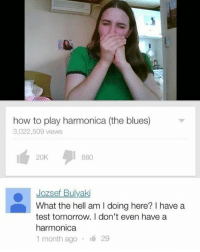School, How To, and Test: how to play harmonica (the blues)  3,022,509 views  20K  880  Jozsef Bulyaki  What the hell am I doing here? I have a  test tomorrow. I don't even have a  harmonica  1 month ago . 29 Me the whole time in school