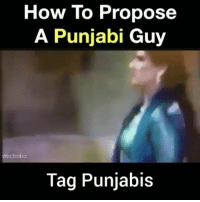 Memes, House, and How To: How To Propose  A Punjabi Guy  bcbaba  Tag Punjabis To all the Punjabis in the House.. Bcbaba