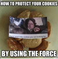 use the force: HOW TO PROTECT YOUR COOKIES  ese aren't the cookies you are looking for  BY USING THE FORCE