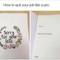 """Memes, Sorry, and How To: How to quit your job like a pro:  It's me.  Sorry  I leave in three weeks.  OSS  Todd <p>With sympathy… via /r/memes <a href=""""https://ift.tt/2s0clcc"""">https://ift.tt/2s0clcc</a></p>"""