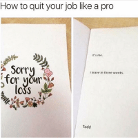 Sorry, How To, and Girl Memes: How to quit your job like a pro  it's me  Sorry  I leave in three weeks  Tor your  lOSS  Todd See u never Susan